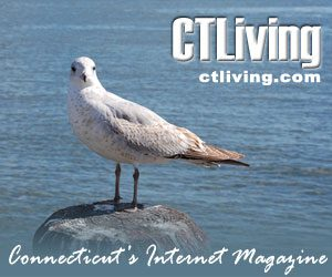 CT Living Magazine The Best of Connecticut Travel Lodging Dining Attractions Living