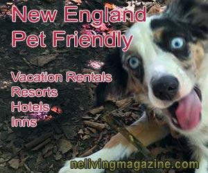 New England Pet Friendly Hotels